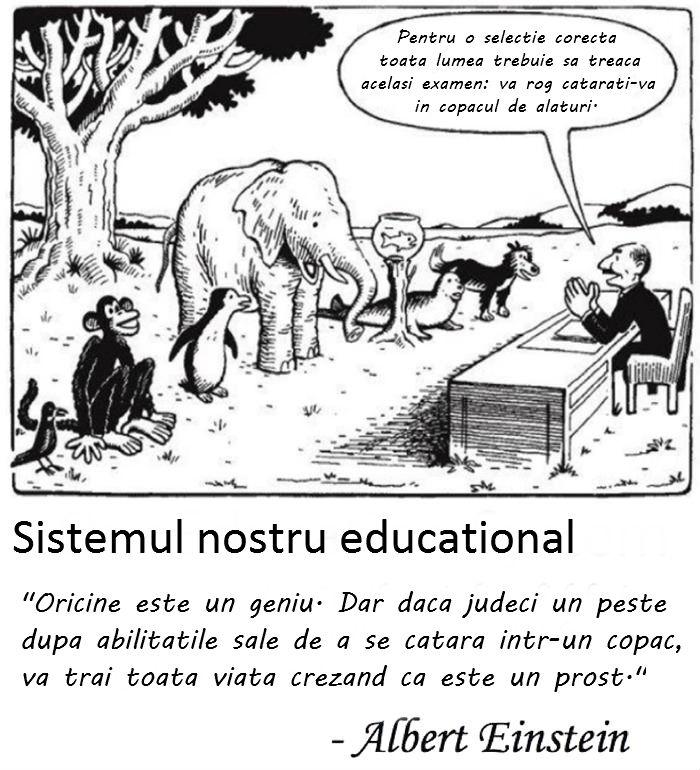 sistemul-educational.jpg